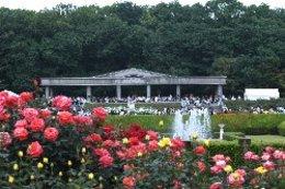 この公園について|神代植物公園へ行こう!