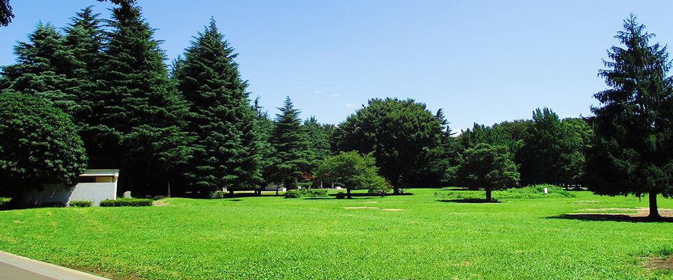 光が丘公園|公園へ行こう!
