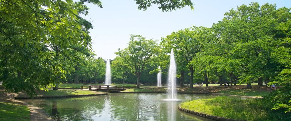 「代々木公園」の画像検索結果