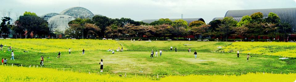 夢の島公園|公園へ行こう!