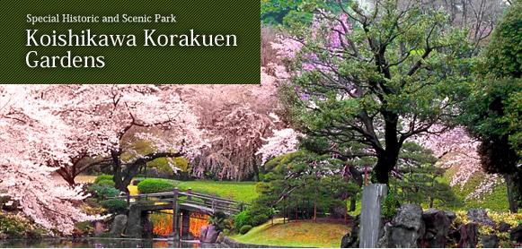 The Scenic Park Koishikawa Korakuen Gardens