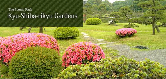 The Scenic Park Kyu-Shiba-rikyu Gardens