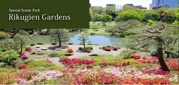 http://teien.tokyo-park.or.jp/en/rikugien/images/rikugien.jpg