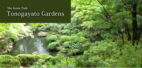 The Scenic Park Tonogayato Gardens